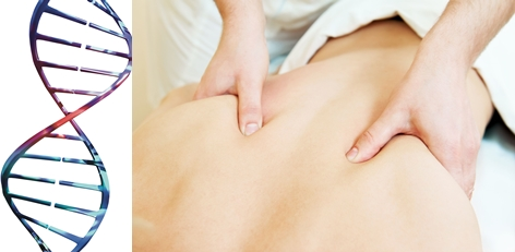 Sports Massage & Deep Tissue Massage in Durham